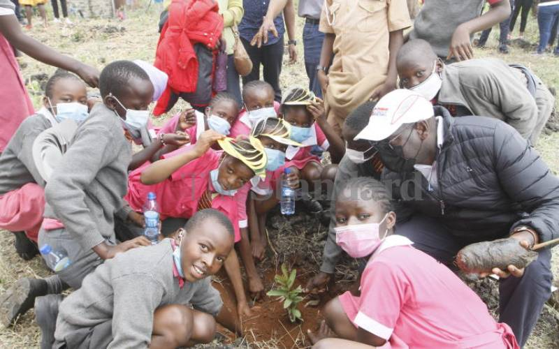 Standard Group, Ashut and Fruity Schools Africa launches fruit tree planting initiative