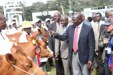 State to work more closely with dairy farmers