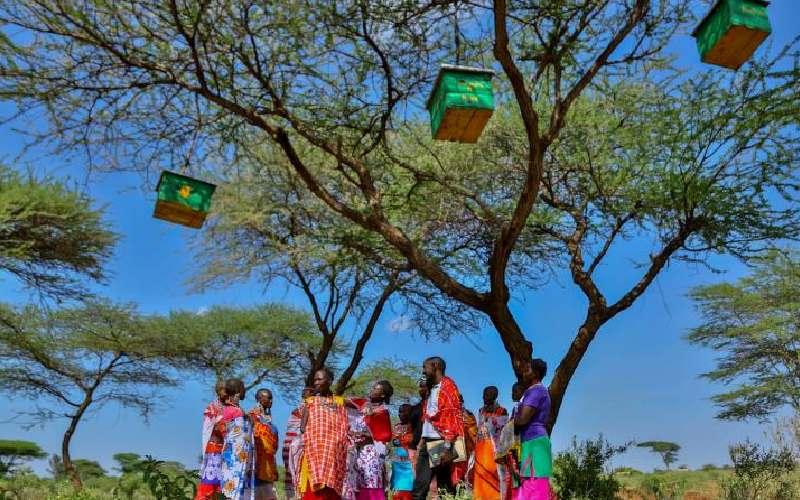 The unseen benefits communities can get from conservancies