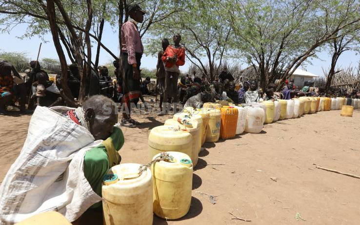 Desperate search for water amid death and pain as drought bites
