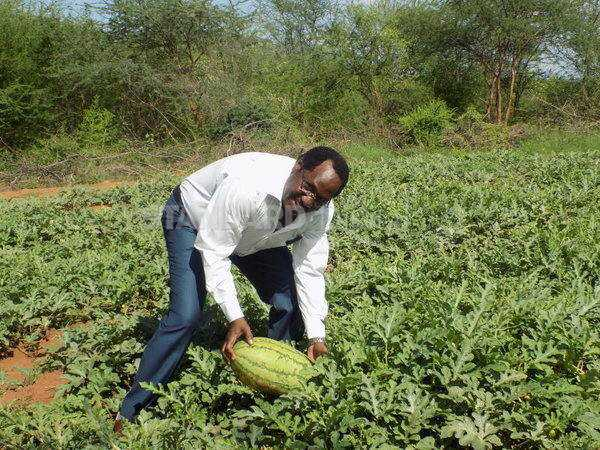 Lecturer: How I bounced back after watermelon disaster