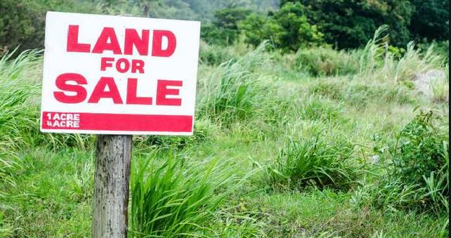 Why land is being sold at throwaway prices