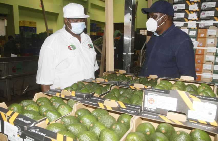 Climate smart agriculture focus in food security effort
