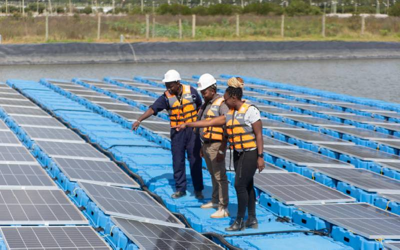 Flower farms bet on solar to cut power costs