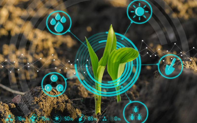 Push-pull technology vital in enhancing agricultural productivity