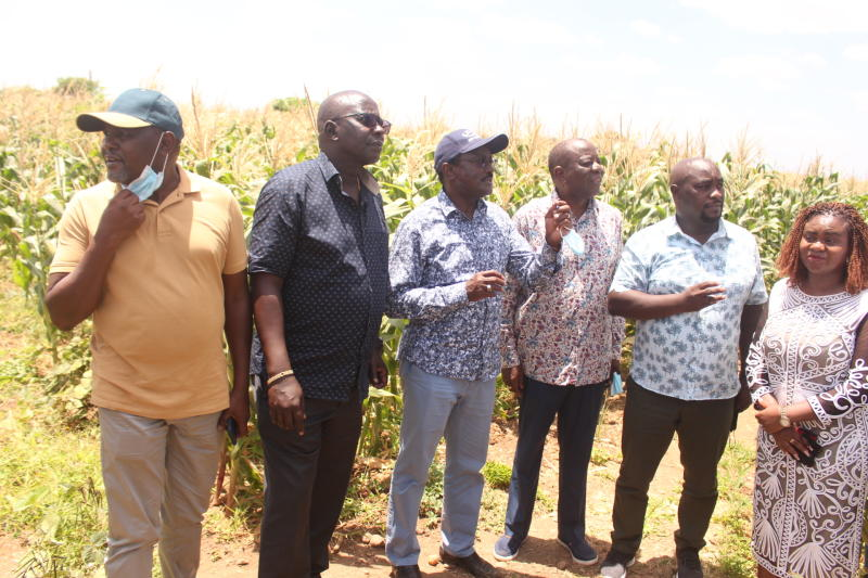 Senators seek Sh2 billion for Wikithuki Irrigation Scheme