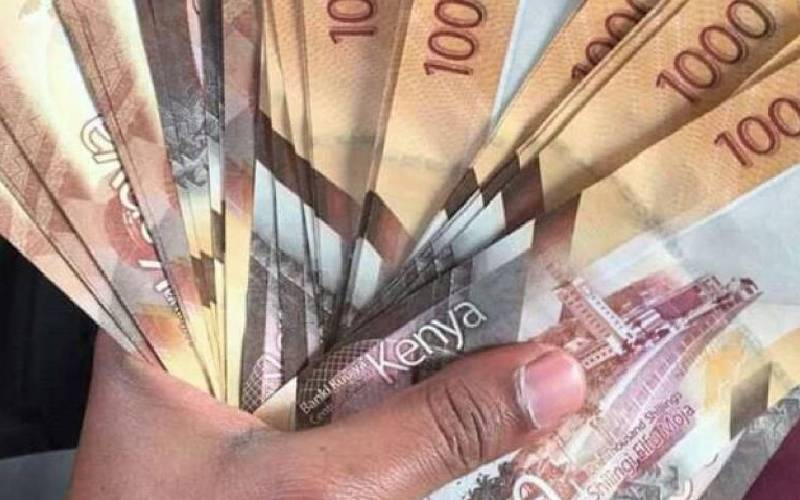 State runs out of space for more domestic loans