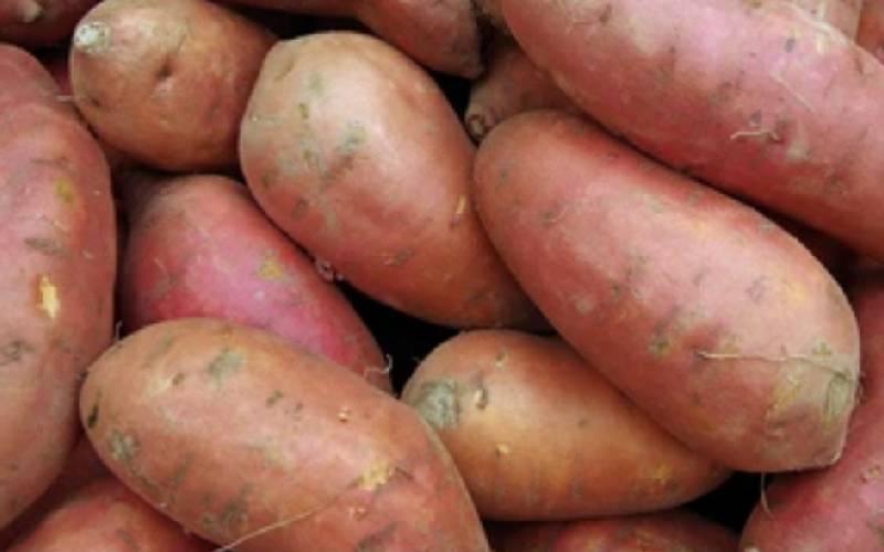 Stressed? Have sweet potatoes, green tea