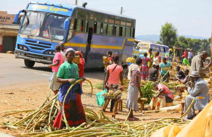 The one stop market for banana and sugarcane