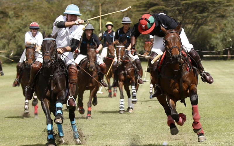 Polo: Platinum are Annesley Cup champions