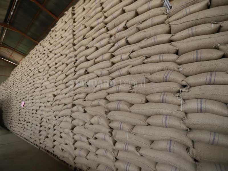 State to destroy 9.4 tonnes of contaminated maize in Mombasa