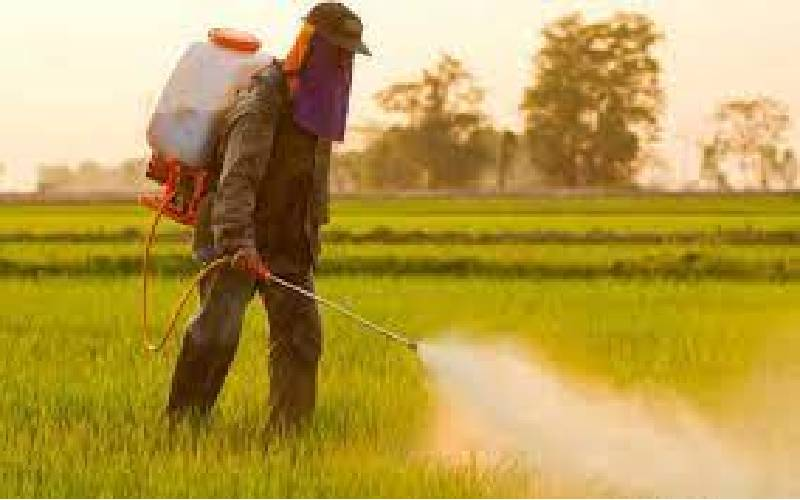 Tussle over pesticides ban Bill