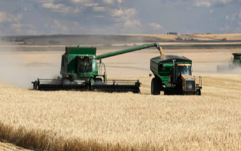 Australia, China dispute over barley tariffs heads to WTO