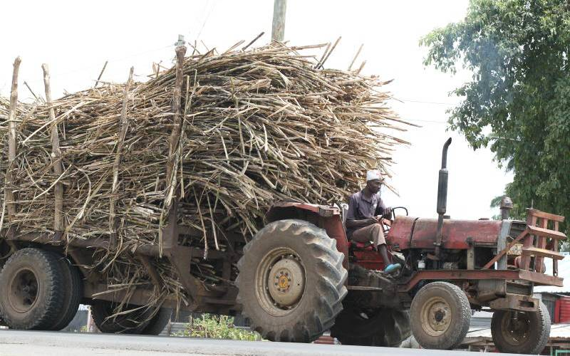 Cane farmers claim sugar miller defying Munya directive on price