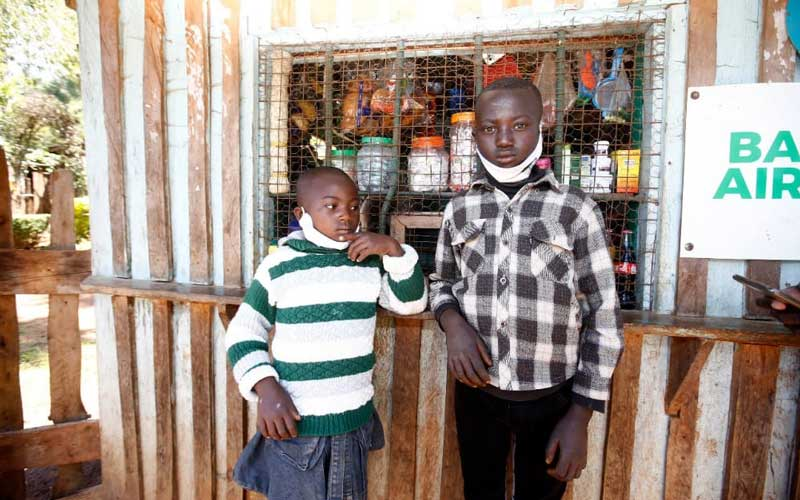 DP Ruto to set up 500-chicken farm for siblings filmed arguing over Sh10