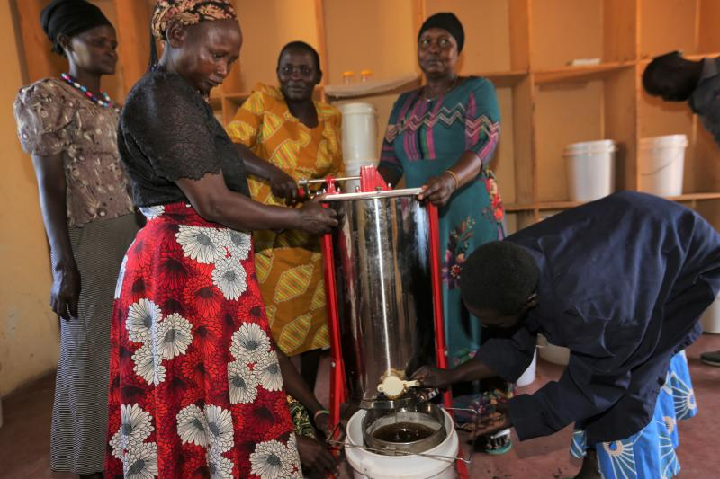 How honey is making life sweet for Pokot widows and single mothers