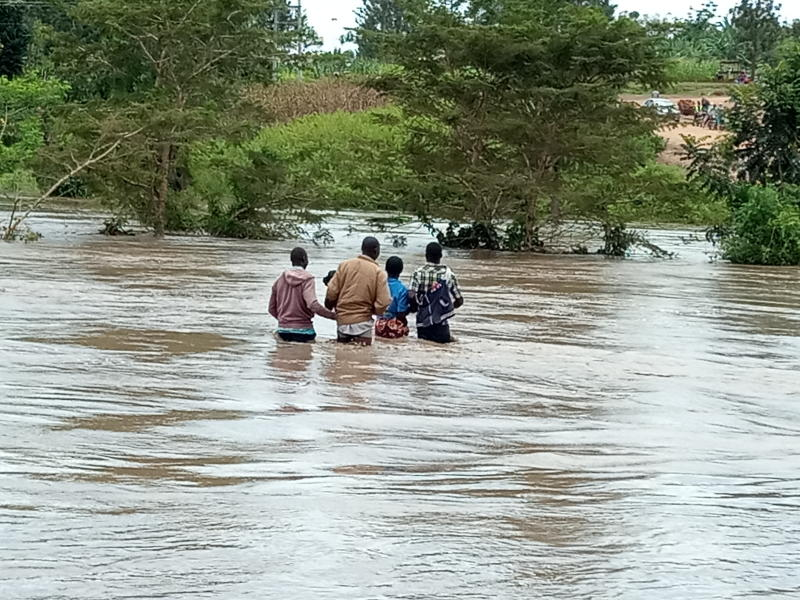 Teso South constituents risk their lives by crossing a submerged bridge at River Makakisi on October 18, 2019. Photo by Ignatius Odanga/Standard