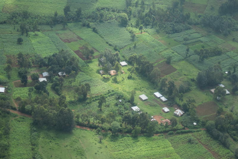 Kenya Forest Service undertakes mapping to save forests