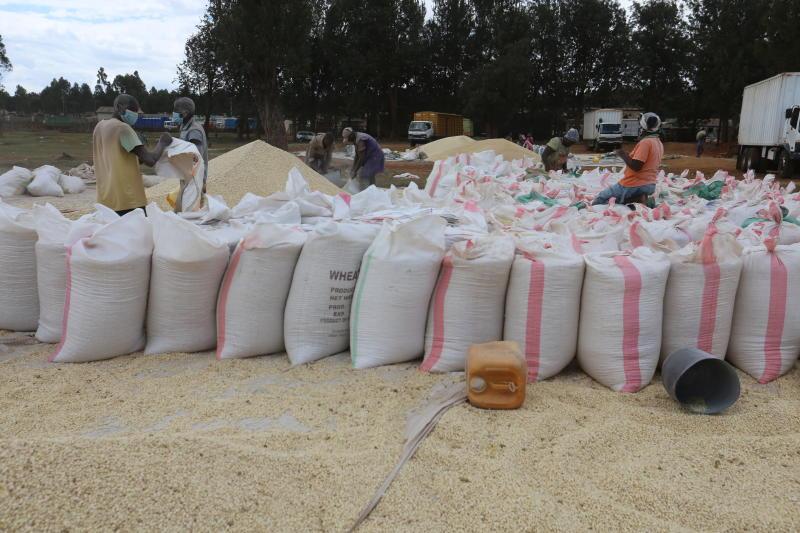 Maize prices drop as border trade booms