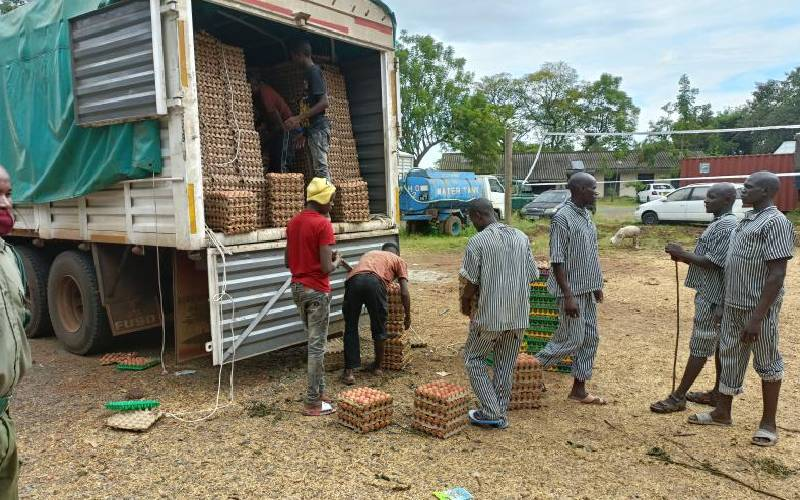 Police confiscate eggs worth Sh2.7m from Uganda