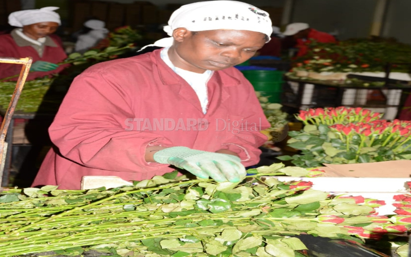 Farm to double flower production by 2020