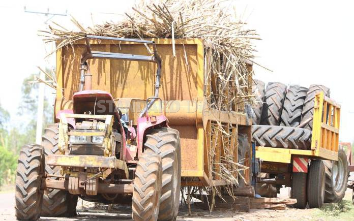 Reducing production cost only will to boost our sugar sector