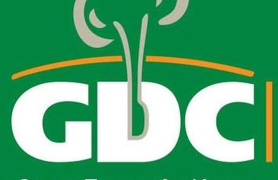 Top power managers eye GDC top seat