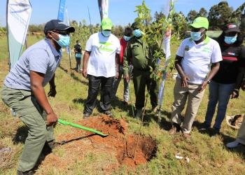 Eldoret City Marathon sponsors plant trees to mark World Environment Day in Uasin Gishu