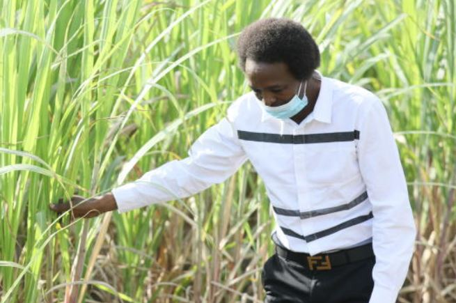 Cane farmers support CS Munya over sugar imports ban