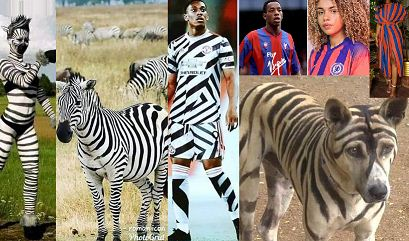 Zebra crossing FC: Chelsea, Man United third kits brutally trolled online  [PHOTOS]