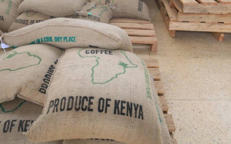 Coffee farmers reap big as new factory adds value to harvest