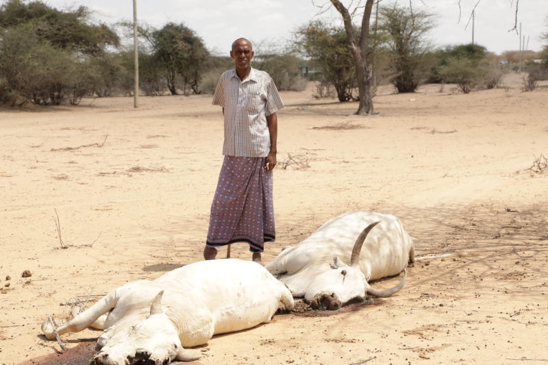 Drought fuels economic gloom and proves we can't plan better