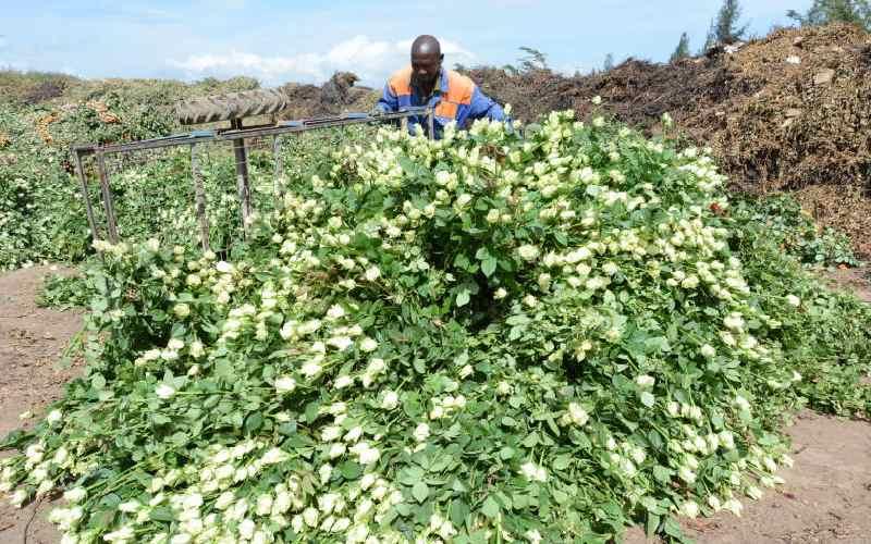 Economy slows to 5-year low on coronavirus fears