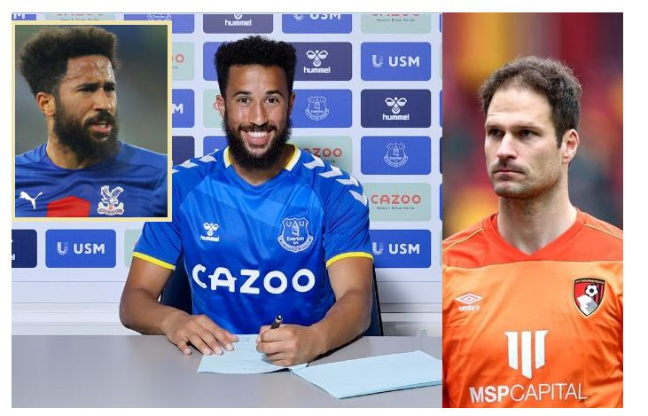 Everton sign former Palace winger Townsend, goalkeeper Begovic