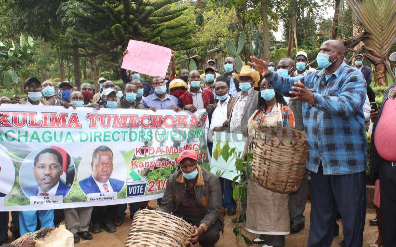 Government ups fight with KTDA bosses