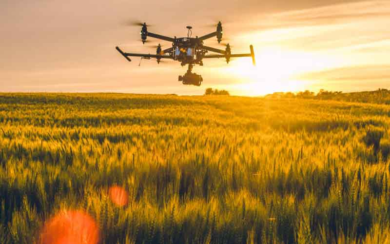 Innovation key to unlocking Africa's agricultural potential
