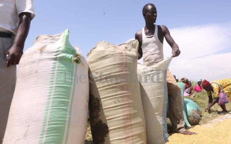 Mechanisation helps farmers reduce losses