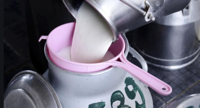 Milk farmers to earn more as New KCC raises price