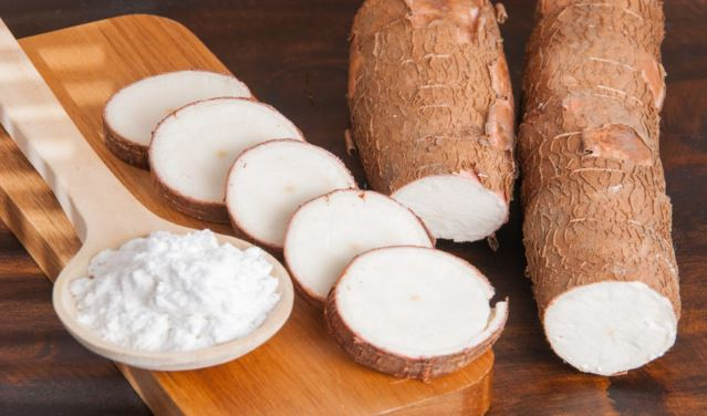 New cassava variety to offer farmers relief