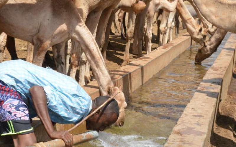 Over two million in need of food aid as drought bites in 10 counties