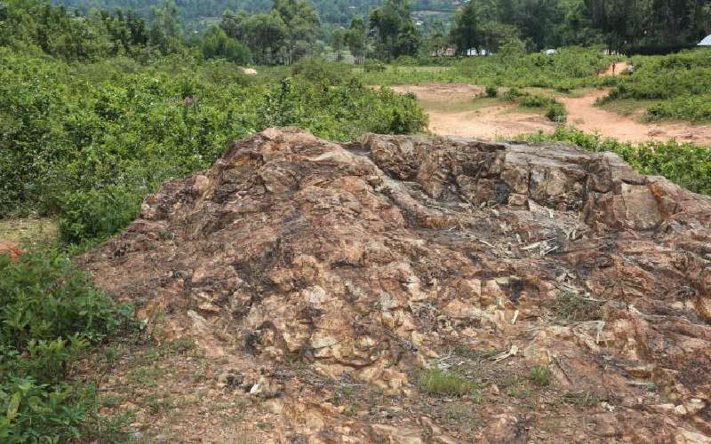 Promise of granite factory in Vihiga remains a pipe dream 10 years on