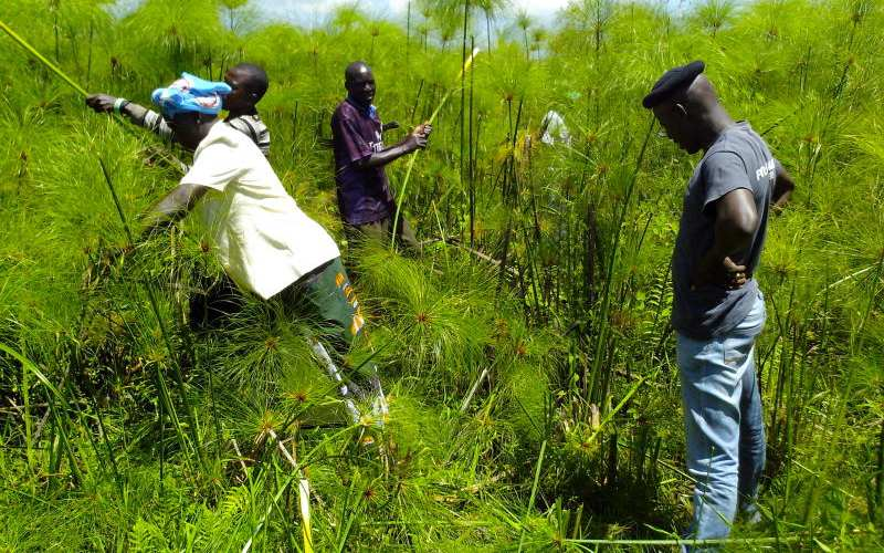 Siaya, Busia Counties step up efforts to have Yala Swamp recognised globally