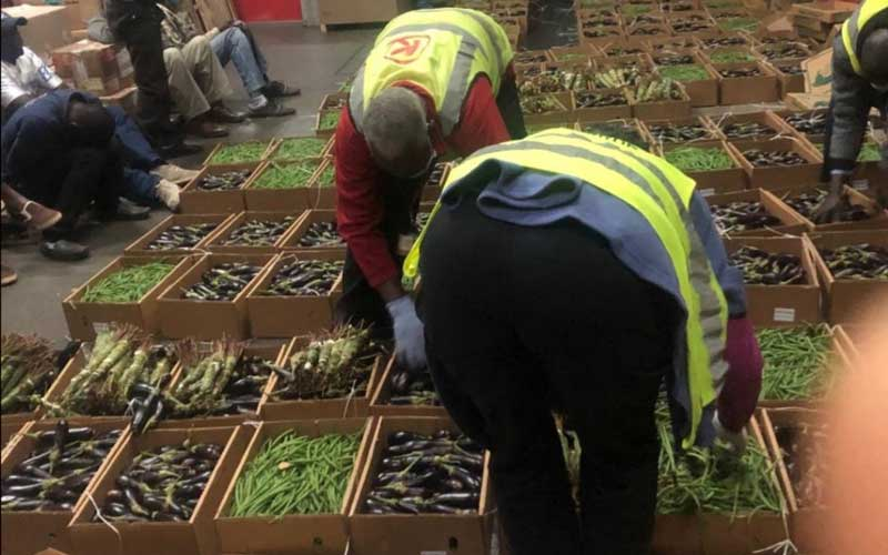 Police intercept miraa concealed as fresh vegetables at JKIA