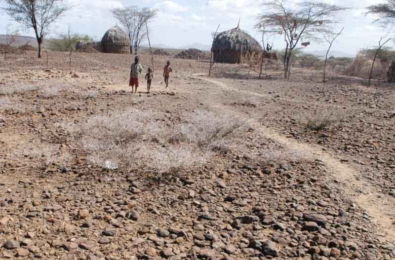 State should declare a state of emergency on drought