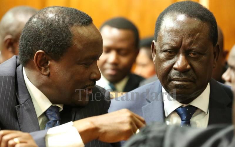 Three NASA principals plot to ditch Raila