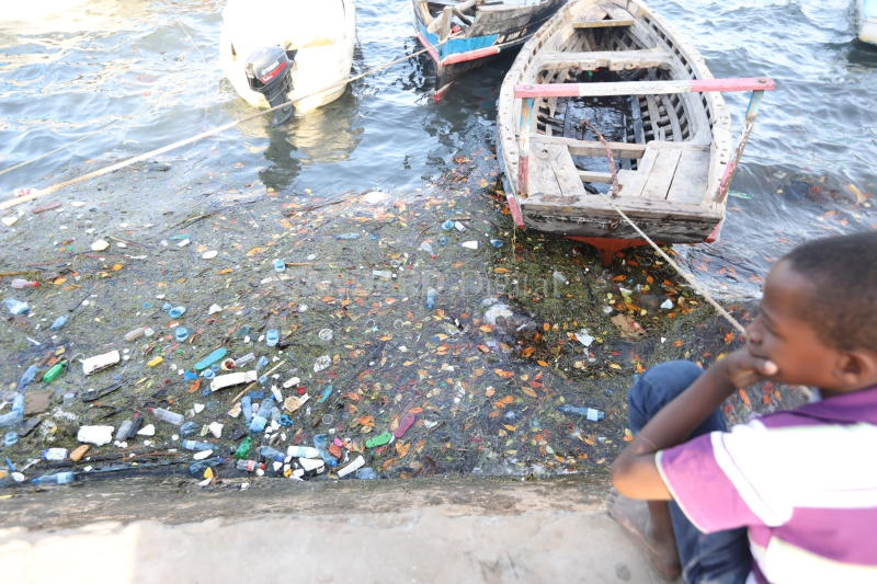 Let us deal with the plastic menace to secure our future