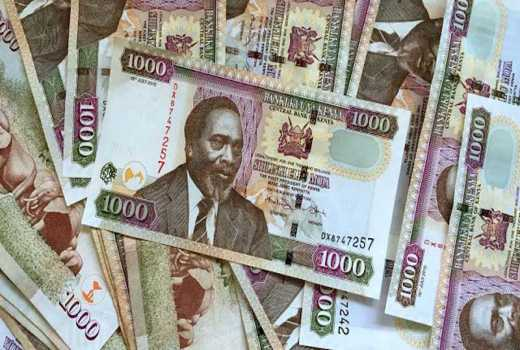 Micro lender lands capital injection