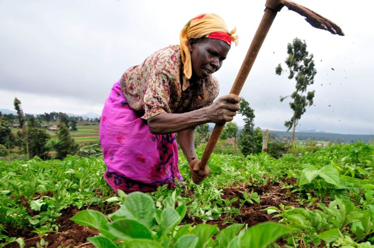 Restructure government subsidies to make farming more lucrative