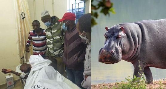 Trabzon half marathon champion attacked by hippos in Nyahururu