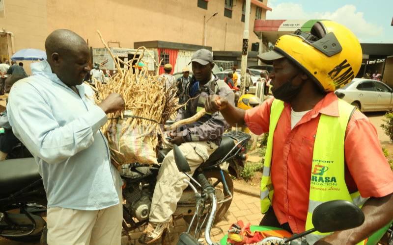 Turning 'Mukombero' into a cash crop